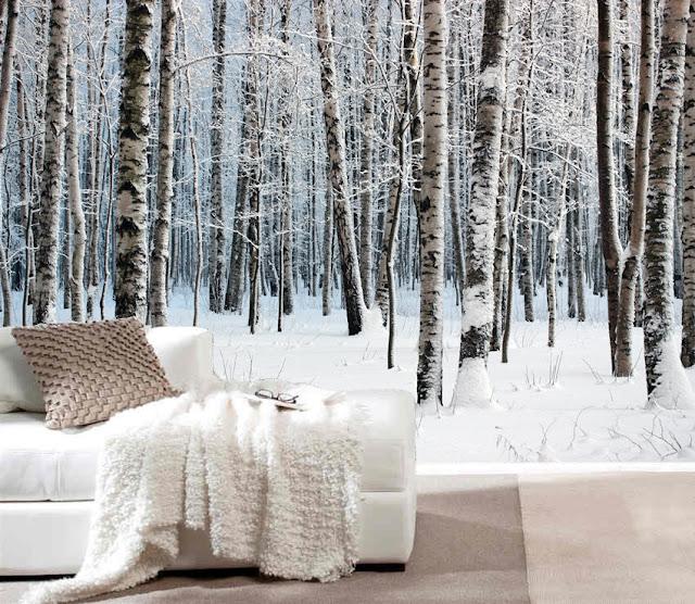 björk tapet vinter landskap trädstammar skog tapet sovrum fototapet