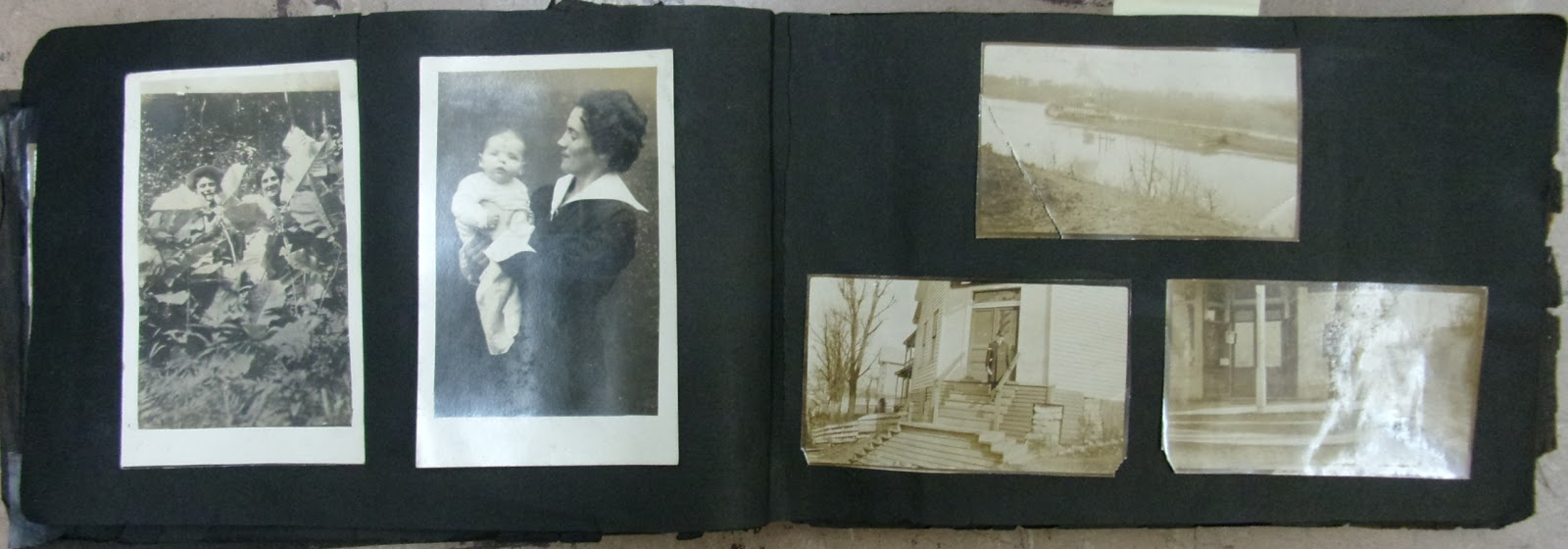A Genealogist In The Archives Preserving Old Black Paper Photo Albums