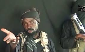 News-Wife Of Boko Haram Leader 'Killed In Airstrike'
