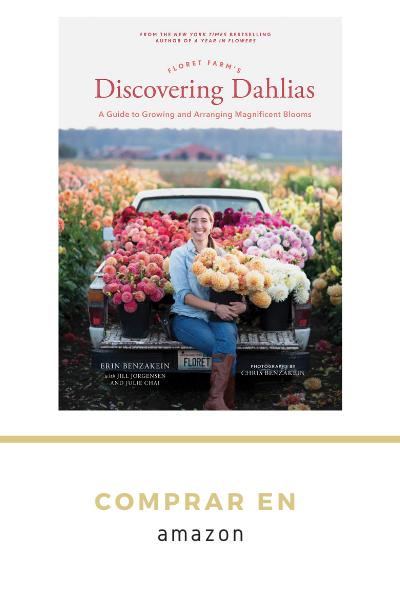 Guía de cultivo y arreglo de flores de dalias