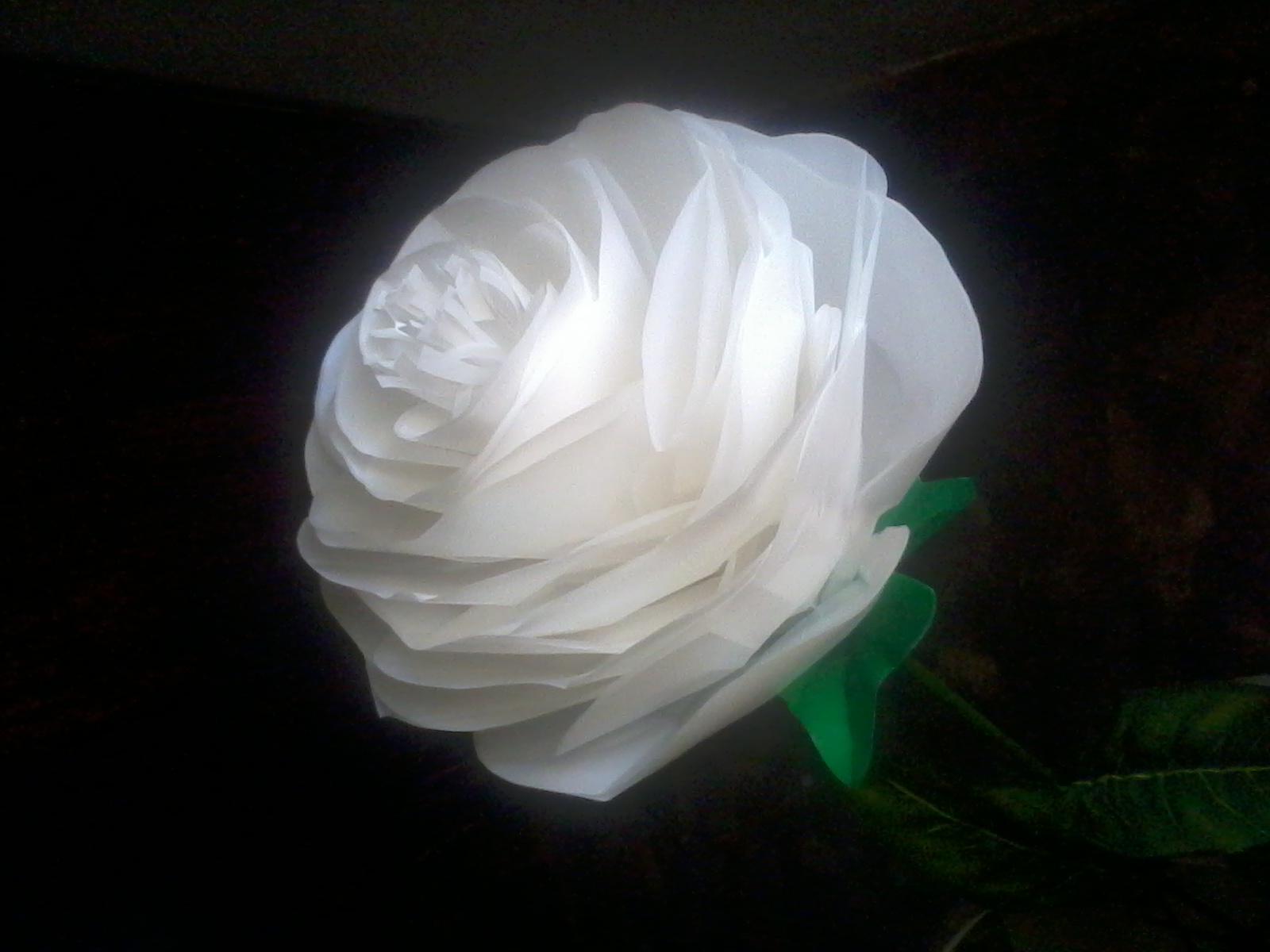Bunga dari Kantong plastik alias kresek.. - welcome My Blog ... 6639c1a0ed