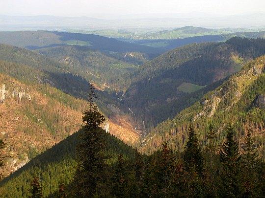 Widok na Dolinę Chochołowską.