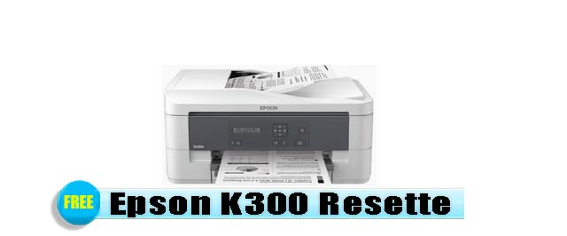 Epson K300 Adjustment Program