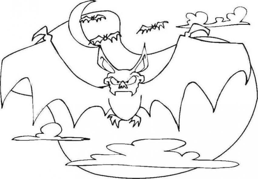 Blog MegaDiverso: Murciélagos Para Descargar Y Colorear