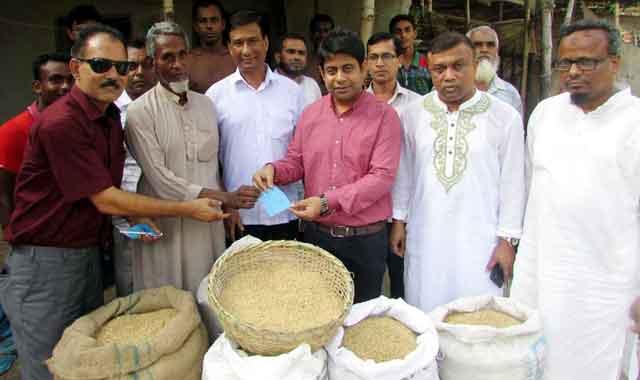 শিবগঞ্জে কৃষকদের বাড়ি বাড়ি গিয়ে ধান কিনলেন ইউএনও
