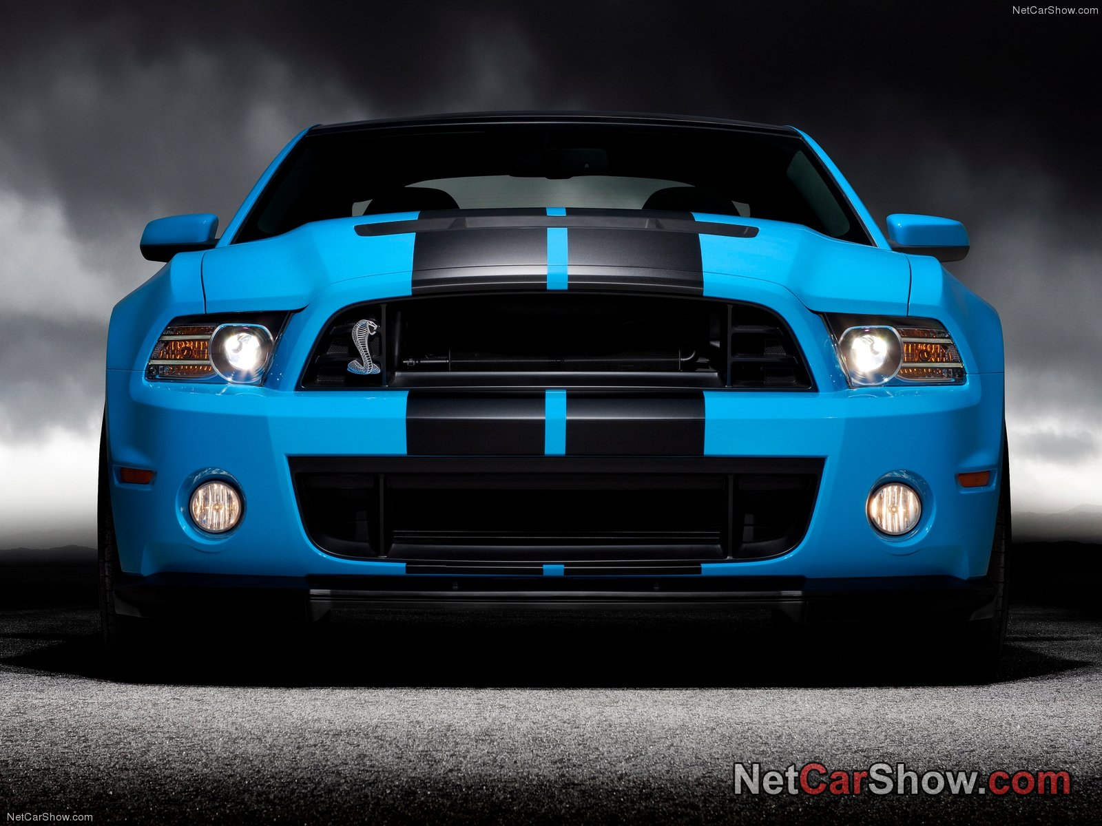Shelby mustangs 20 pictures of new shelby mustang gt500 - Wallpaper mustang shelby gt500 ...