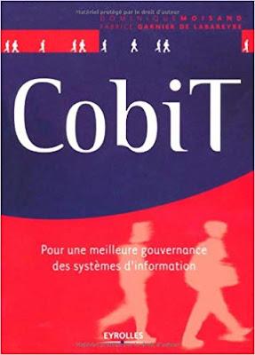 CobiT : Pour une meilleure gouvernance des systèmes d'information PDF