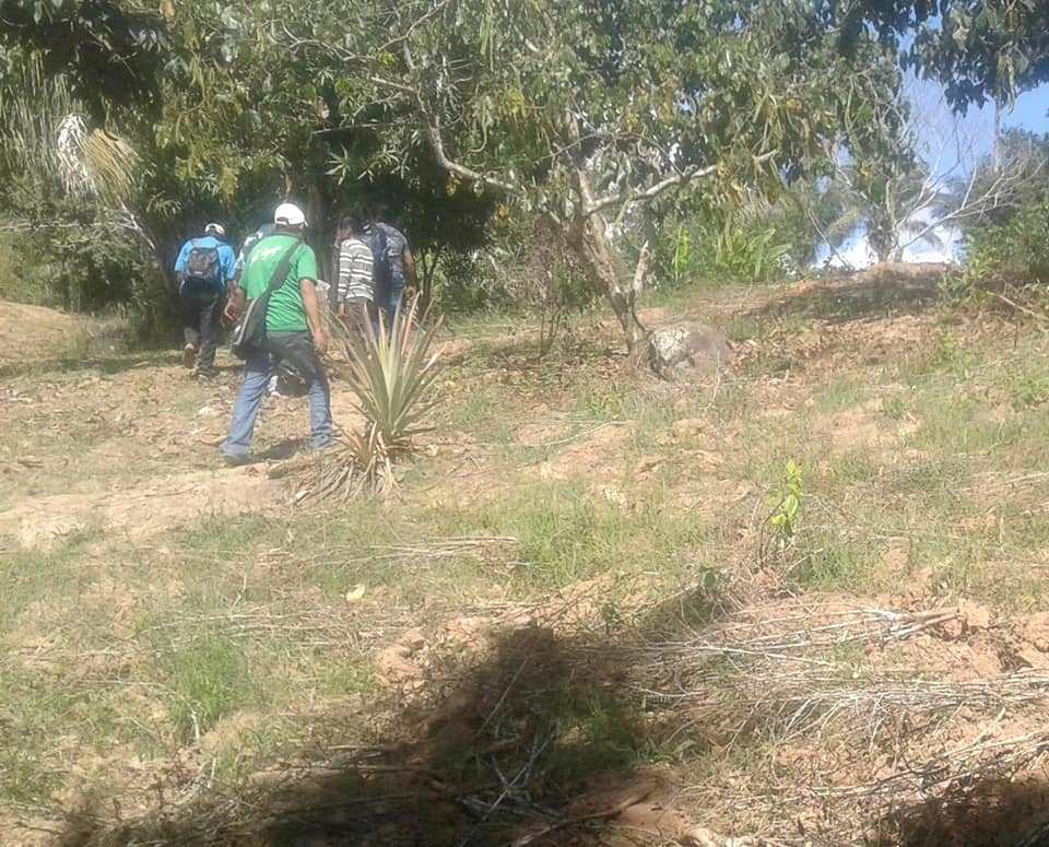 Población de Yungas se encuentra en emergencia por presencia de la FTC / FM BOLIVIA