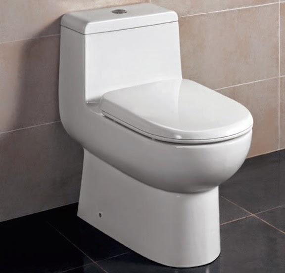 Eago Dual Flush Ceramic Toilet Review