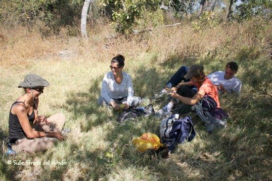 Okawango botswana