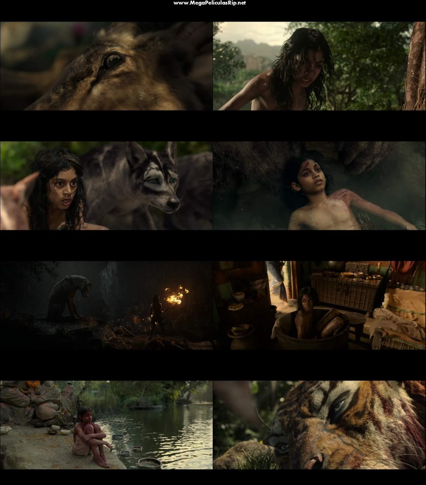 Mowgli La leyenda de la selva 1080p Latino
