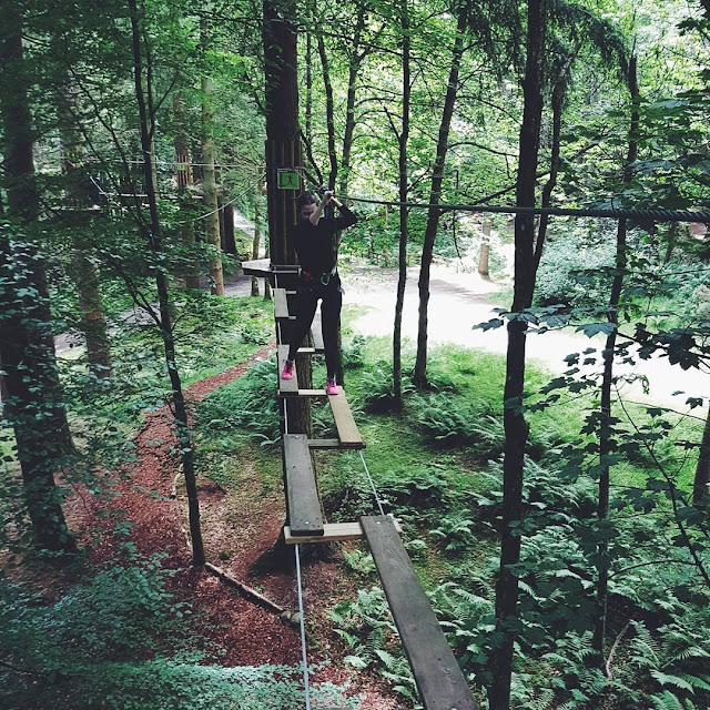 Go Ape in the trees