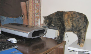 The cat Sophia investigating our scanner when it was new