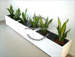 ctp saksı - polyester saksı - fiber saksı - fiberglass çiçeklik - cafe saksısı - otel saksıları - ofis saksı - teras için saksılar - işletme saksıları - restaurant saksısı - kompozit saksı imalatı - bahçe saksıları - büyük yatay saksılar - yuvarlak model saksı tasarımları - saksıcı firma - saksı tasarımları - saksı çeşitleri