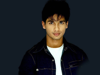 Shahid Kapoor Normal Resolution HD Wallpaper 11