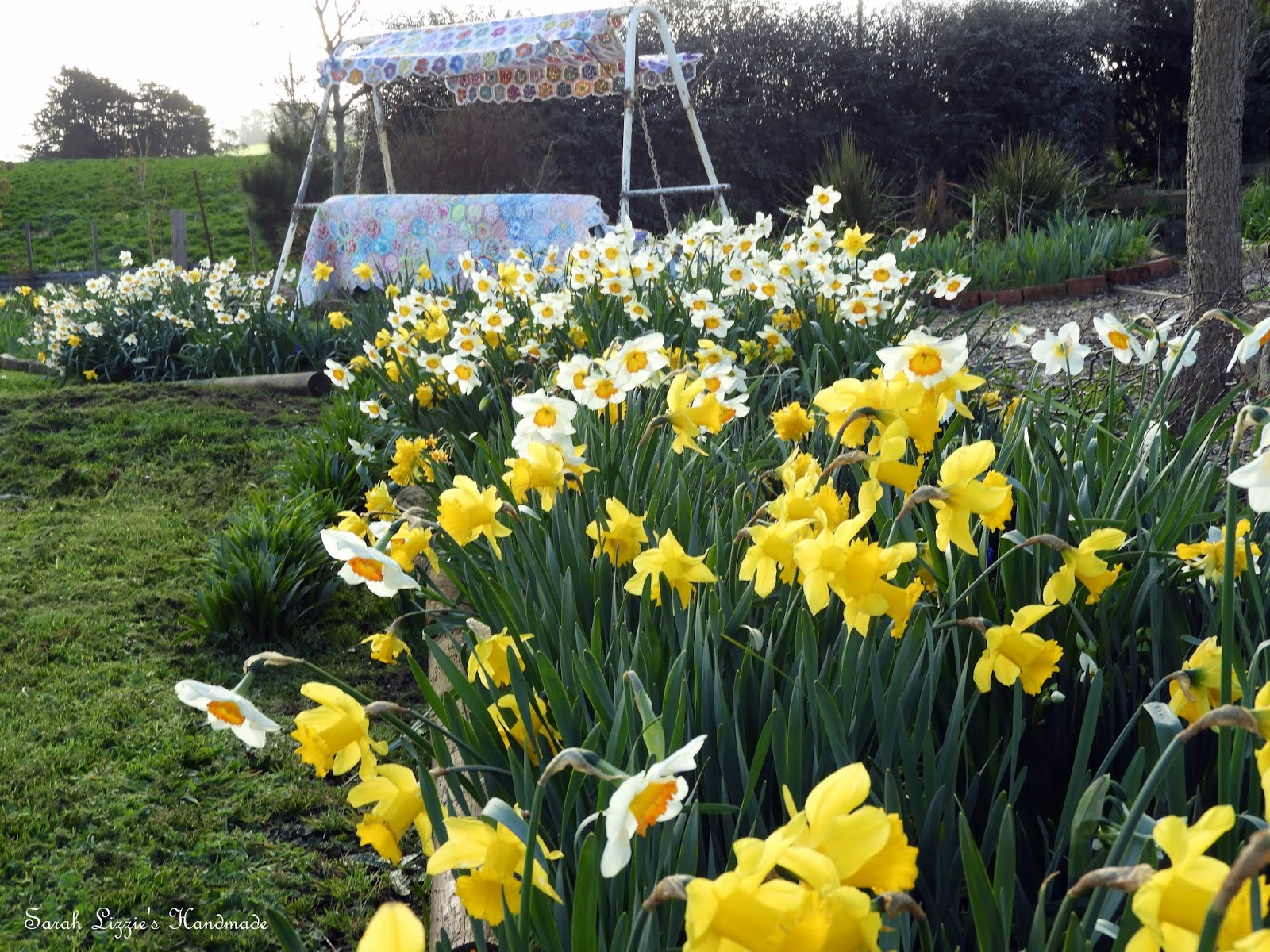 How do daffodils use your love to manipulate you