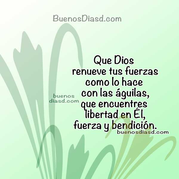 Frases cristianas de buenos días por Mery Bracho, saludos para la mañana con mensajes cristianos para ti antes de comenzar tu trabajo.
