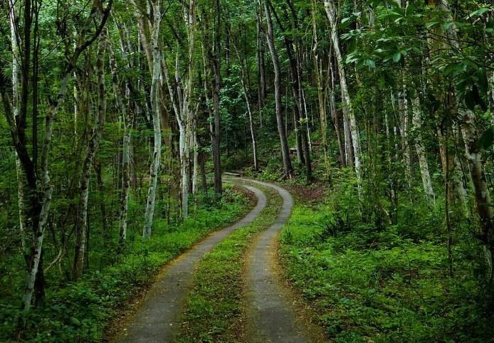 Lokasi dan Area Camping Ground Paling Keren Di Wilayah Jogja dan Sekitarnya Air terjun Hutan Wanagama