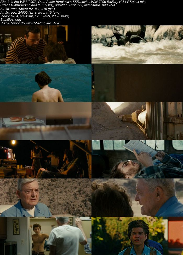 Into the Wild (2007) Dual Audio Hindi 480p BluRay x264 450MB ESubs Movie Download