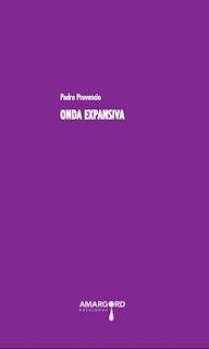 PEDRO PROVENCIO, CUESTIONARIO: POESÍA (2/4)