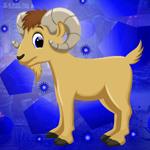 G4K Good looking Goat Esc…