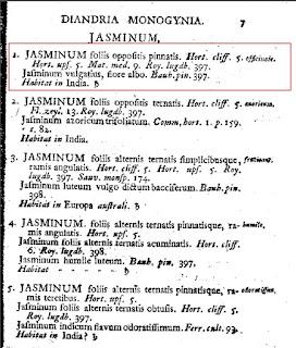 Page from Species Plantarum Showing Jasminum officinale