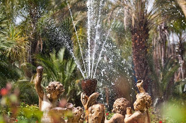 Agua y jardín