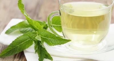 Τσάι μέντας: Ένα γευστικότατο ρόφημα που προστατεύει το DNA μας