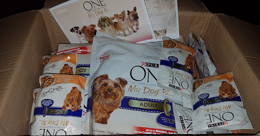 Campagna PURINA ONE My Dog Is... ADULT