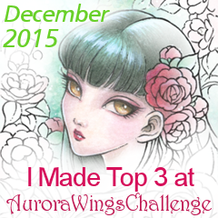 Top 3 at Aurora Wings