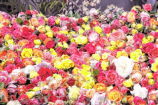 цветы на 8-е марта дёшево - отличные букеты роз и тюльпанов недорого