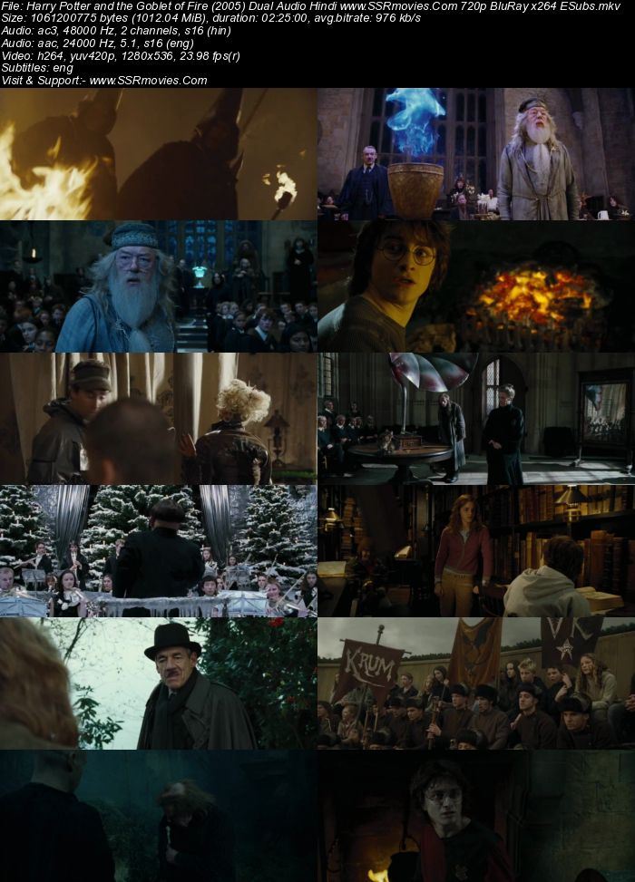 Harry Potter and the Goblet of Fire (2005) Dual Audio 480p BluRay 450MB ESubs Movie Download