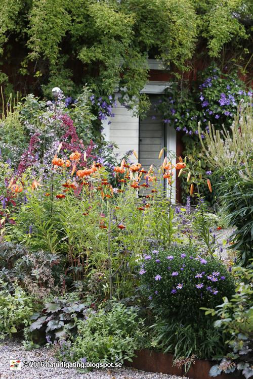 Trädgård O Sånt : Naturliga ting trädgårds g Årets trädgård