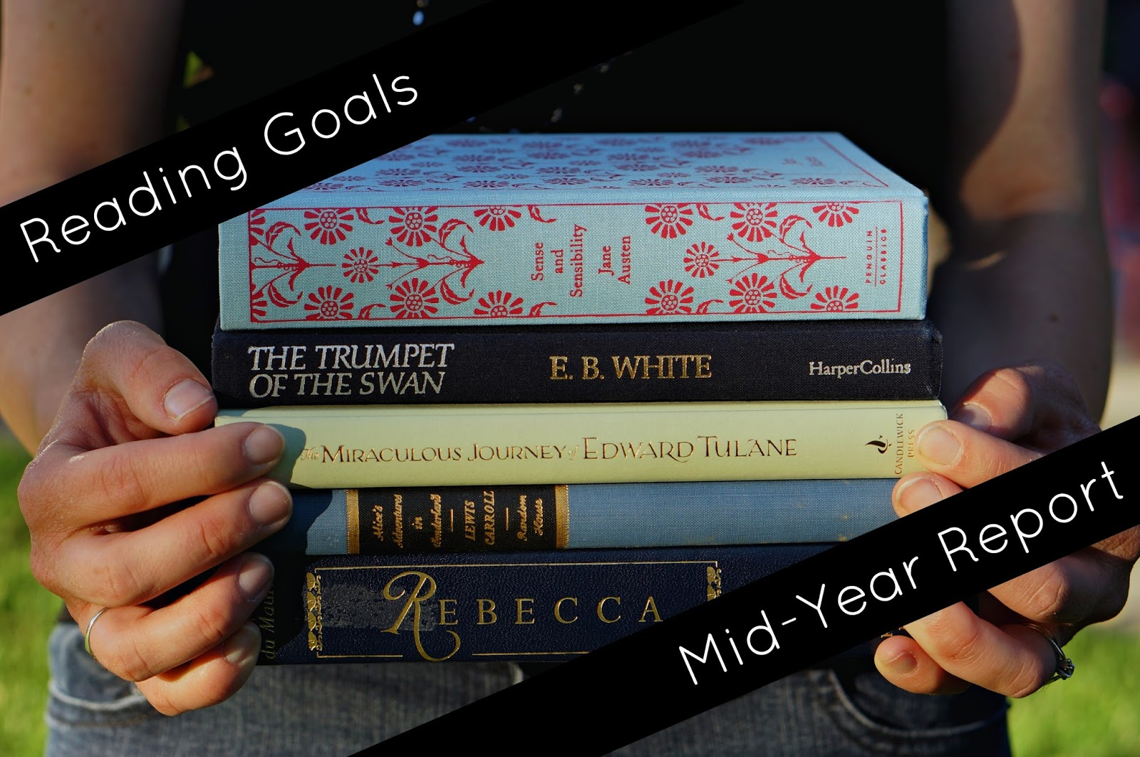 Sunlit Pages: Reading Goals 2016: The Halfway Point