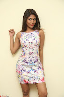 Nishi Ganda stunning cute in Flower Print short dress at Tick Tack Movie Press Meet March 2017 057.JPG