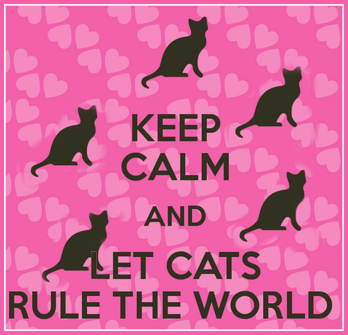 MEME • Keep calm and let Cats rule the World