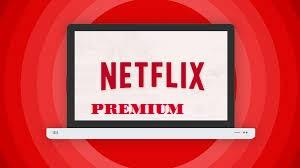 Premium Netflix Account