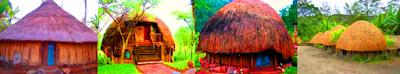 Rumah adat daerah Papua, suku Dani adalah Honai, Rumah tersebut terdiri dari dua lantai terdiri dua lantai, lantai pertama sebagai tempat tidur dan lantai dua untuk tempat bersantai, dan tempat makan. Honai berbentuk jamur dengan ketinggian sekitar 4 meter.