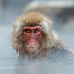 霊感占いは、温泉に浸かっている様な感覚もある