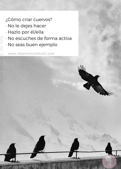 Cria cuervos y te sacaran los ojos ¿Como criar cuervos?
