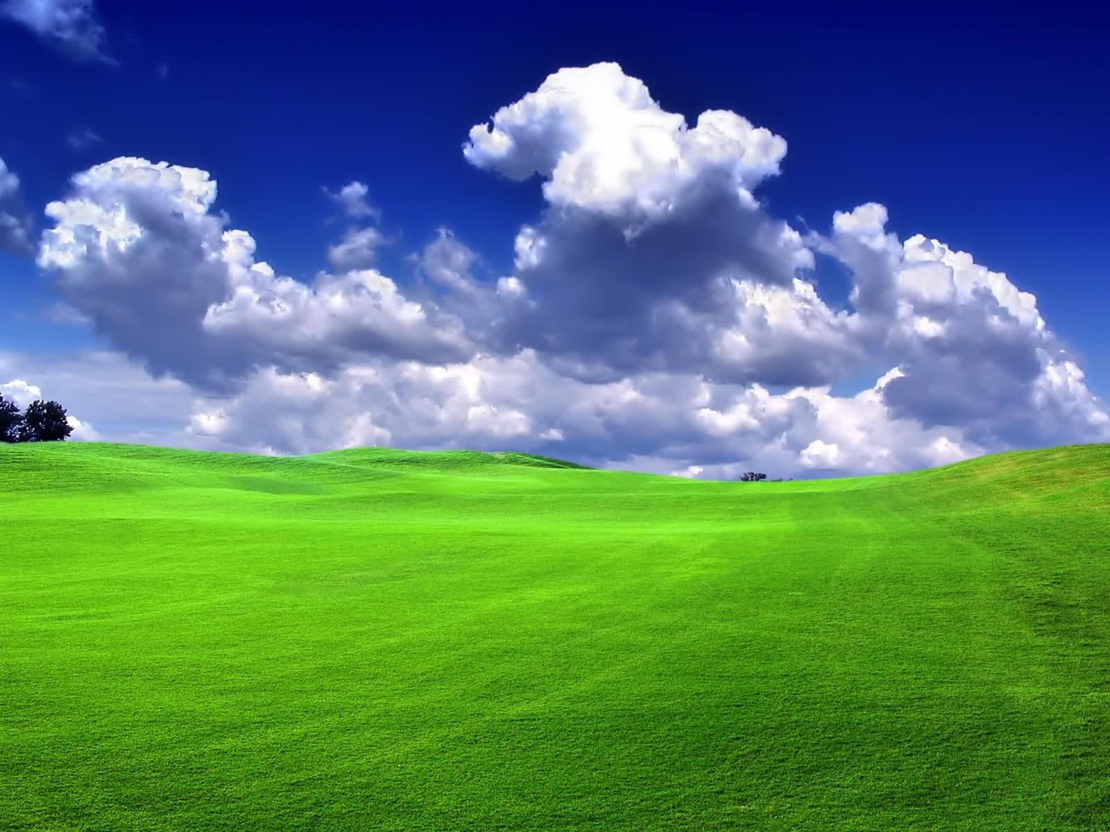 Windows Xp HD Wallpaper - Wallpapers