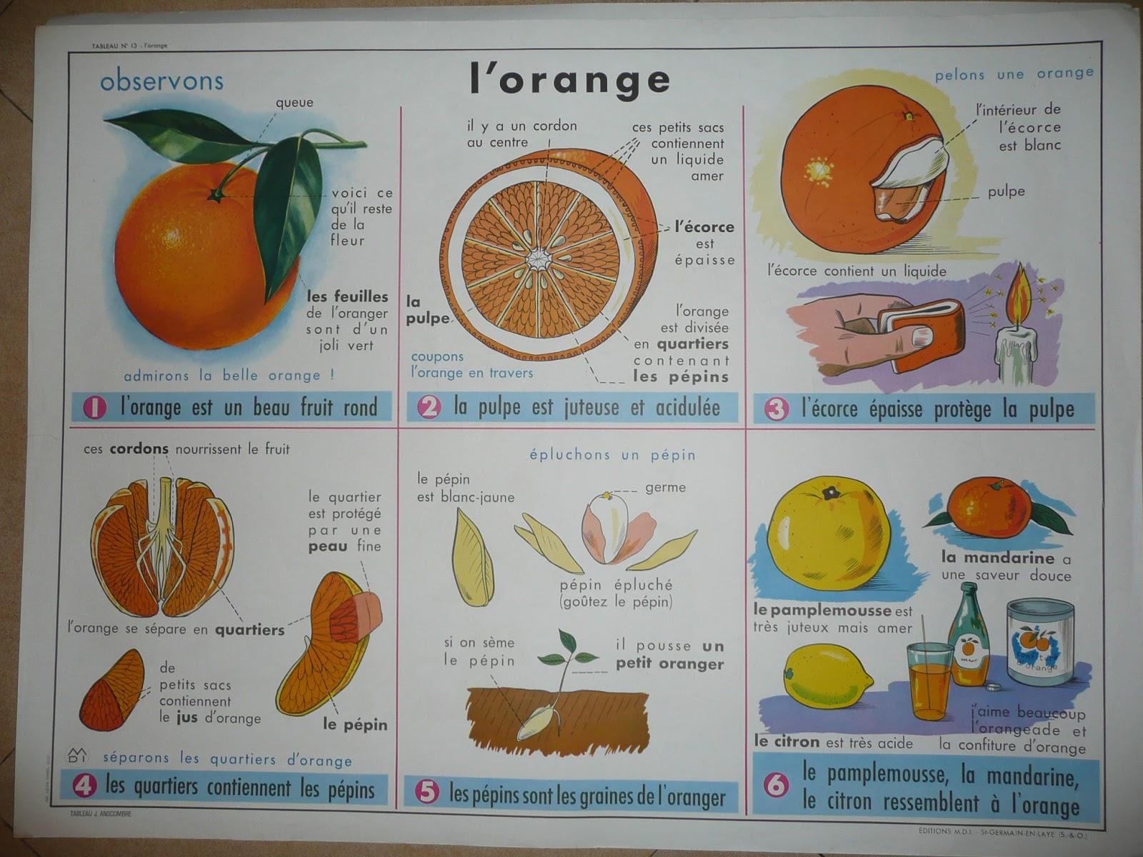 rencontres orange 84