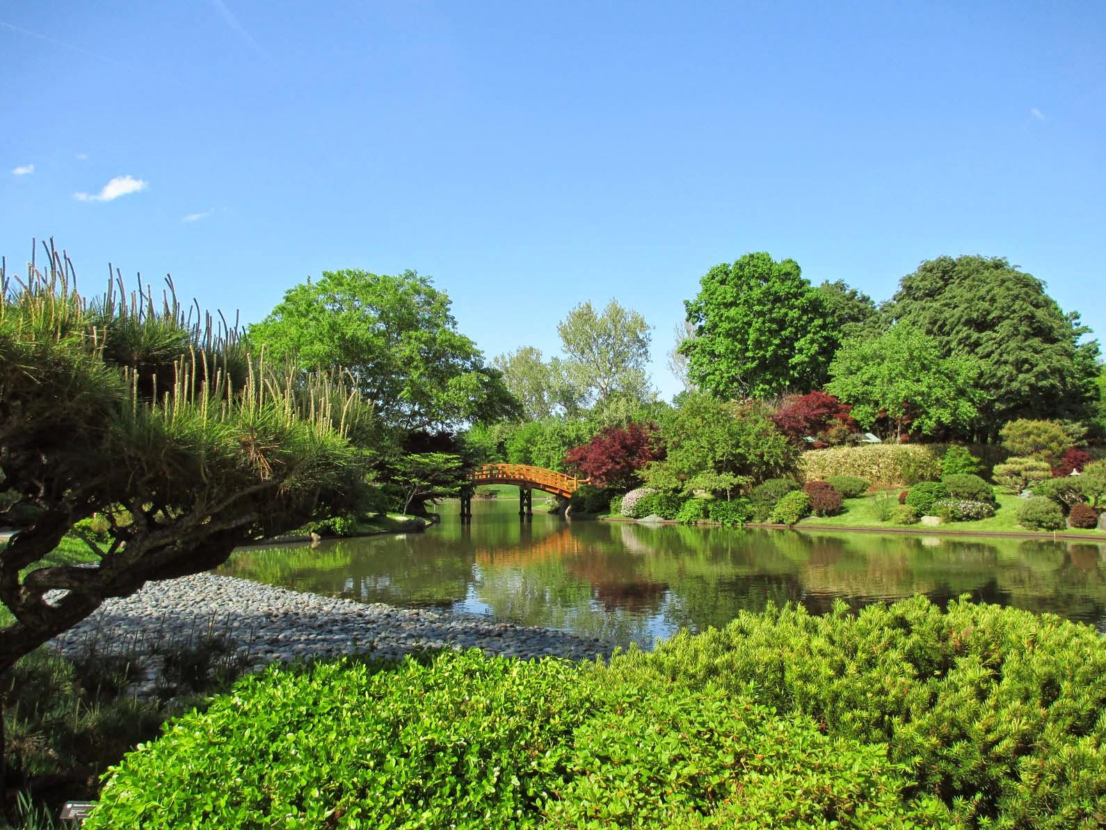 Garden Fancy: Garden Visit: MOBOT Spring 2014