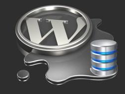 Cara Setting Koneksi Database di Wordpress Pada Hosting