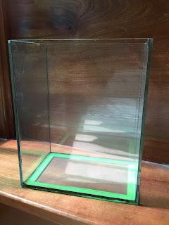 hồ kính dành cho hồ cá beta với thiết kế nhỏ gọn