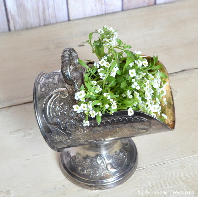 use a silver caddy as a decorative plant holder