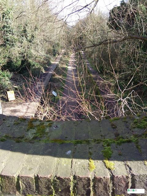[英國/倫敦] Parkland Walk - 綠色隧道 森林小徑 廢棄鐵道探秘