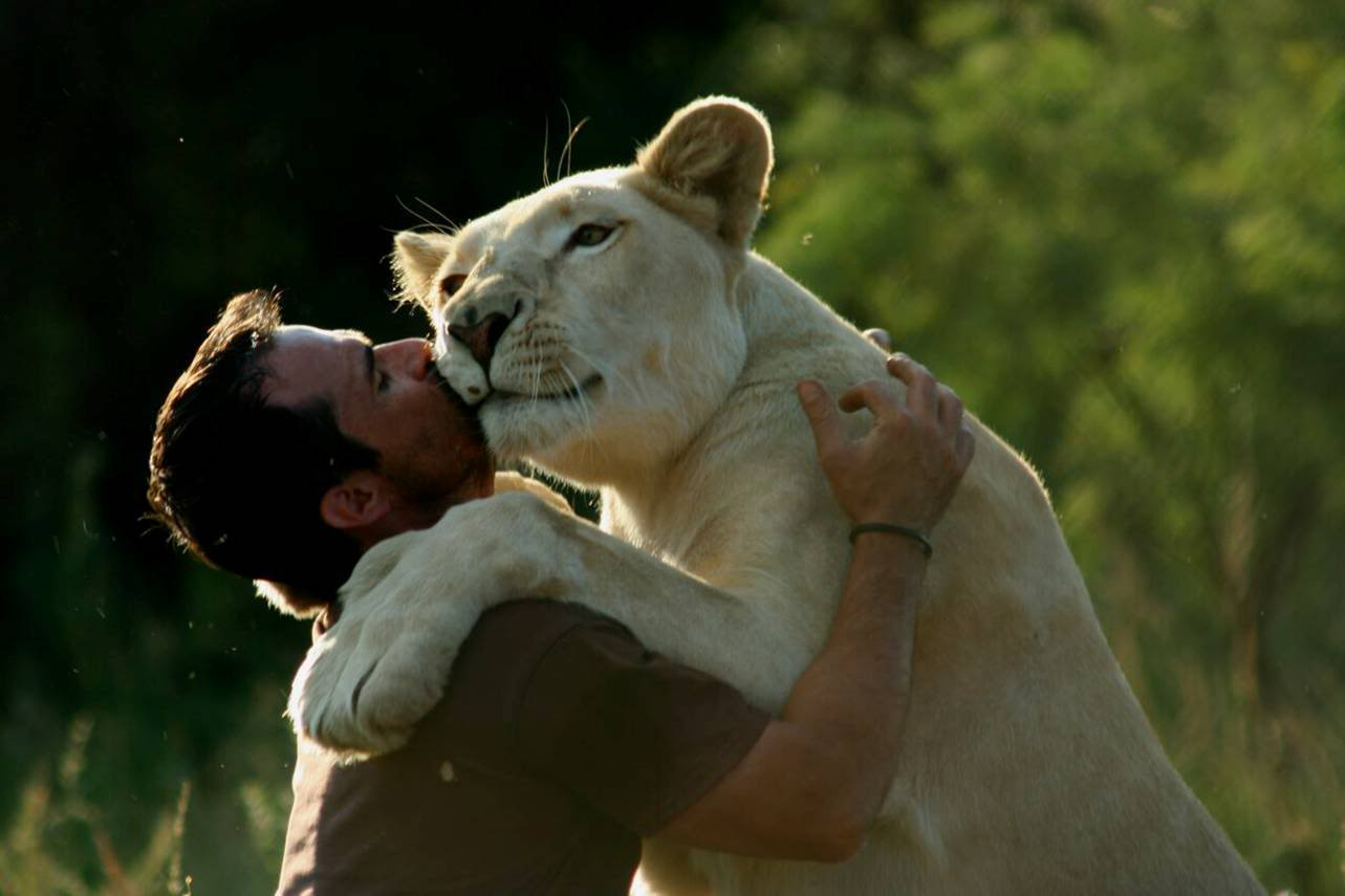 Kiss Day Wallpapers With Quotes Desktop Wallpapers Kevin Richardson The Lion Man