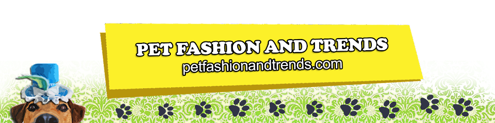 Pet Fashion  and Trends Philippines