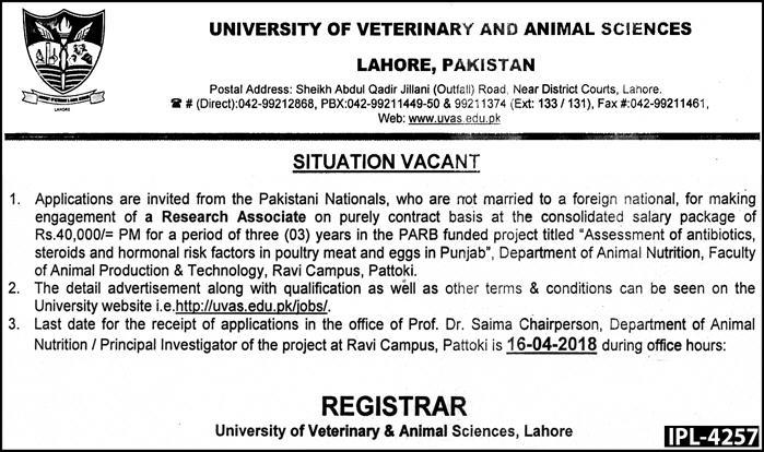 University of Veterinary & Animal Sciences Lahore Jobs 2018